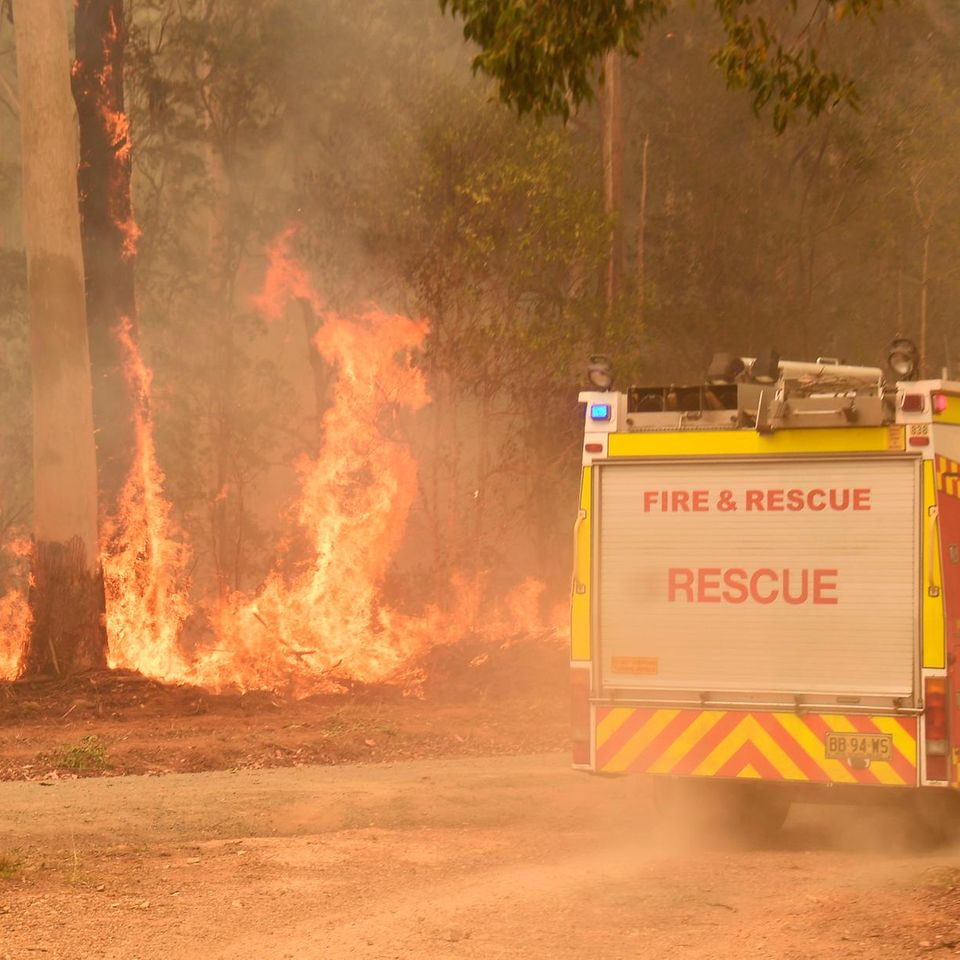 Stars spenden für Australien: Buschbrände bewegen die Welt!