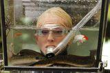 Dschungelcamp: Désirée Nick im Aquarium