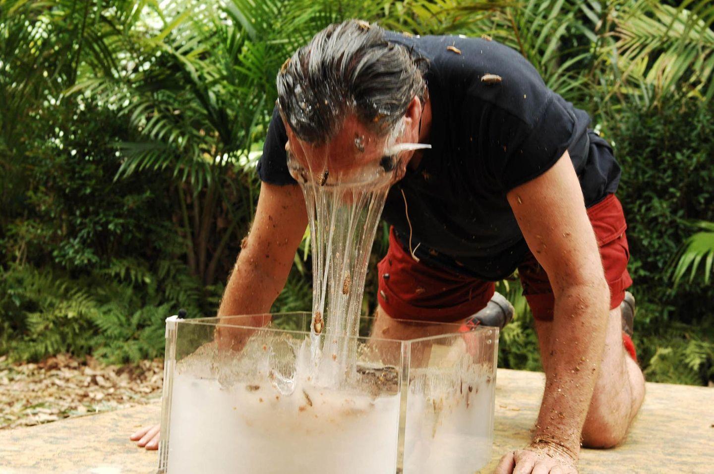 Dschungelcamp: Peter Bond taucht Kopf in den Schleim