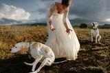 Die besten Hochzeitsfotos der Welt von 2019: Braut mit Hund