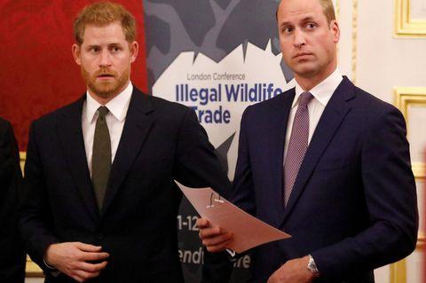 Harry und William: Erstes gemeinsames Statement nach Megxit