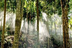NATUR PUR Die Einwohner lieben die Natur in Lombok und tun alles, um sie zu schützen
