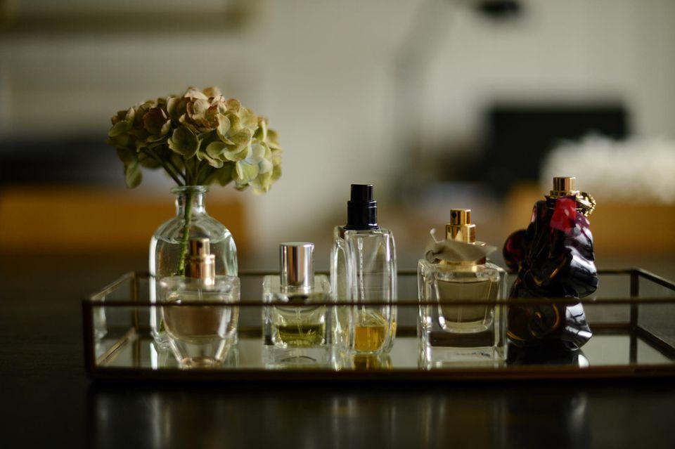 Valentinstag: Die schönsten Parfums zum Verschenken