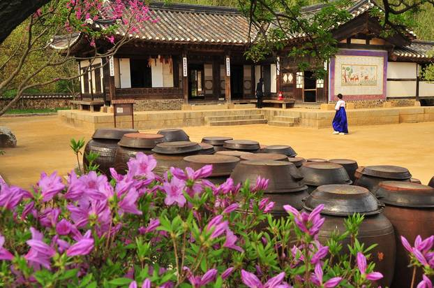 Achtsam kochen: Die wichtigste Zutat ist Geduld: Natur Südkorea