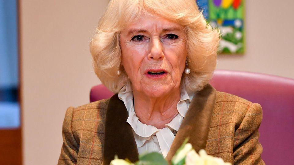 Herzogin Camilla: Das sagt sie zum Megxit