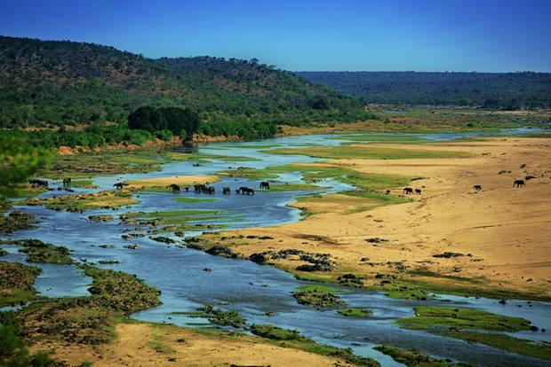 Drakensberge: Südafrika-Safari mal anders: Elefanten im Nationalpark