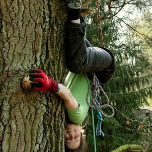 Cécile Lecomte: Widerstand als menschliche Notwendigkeit: Cécile Lecomte hängt im Baum