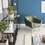 Exotische Zimmerpflanzen: Lust auf Monstera & Co.: Wohnraum mit Pflanzen