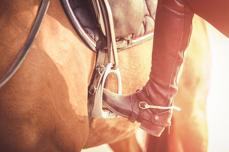 Aufsitzen auf Pferd