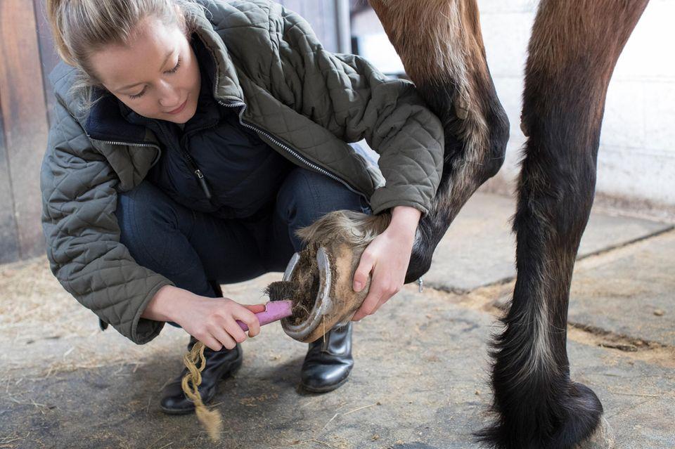 Frau reinigt Hufe eines Pferdes