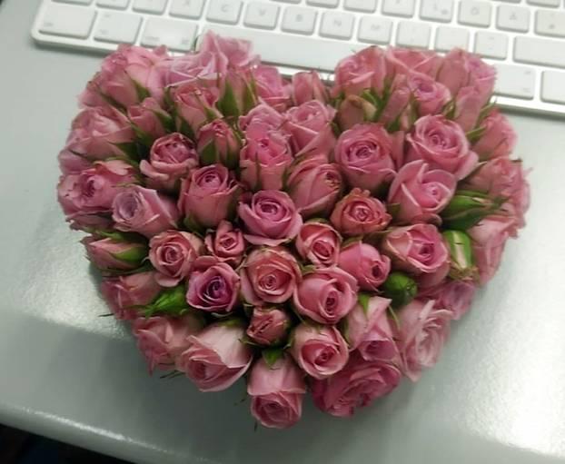 Rosen von Julia