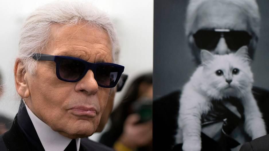 Karl Lagerfeld: Ein Jahr nach seinem Tod ist seine Katze jetzt in guten Händen