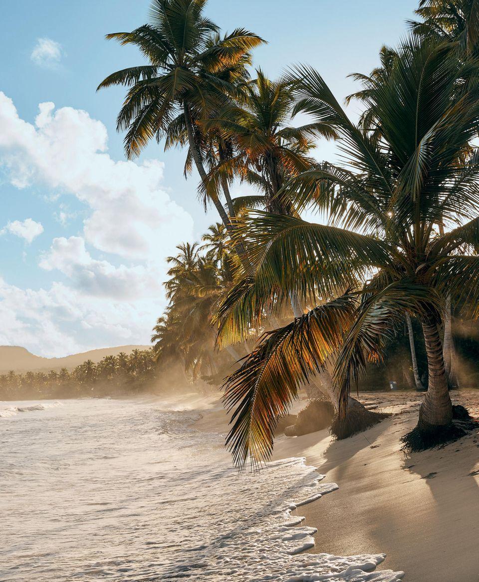 Dominikanische Republik: Samaná