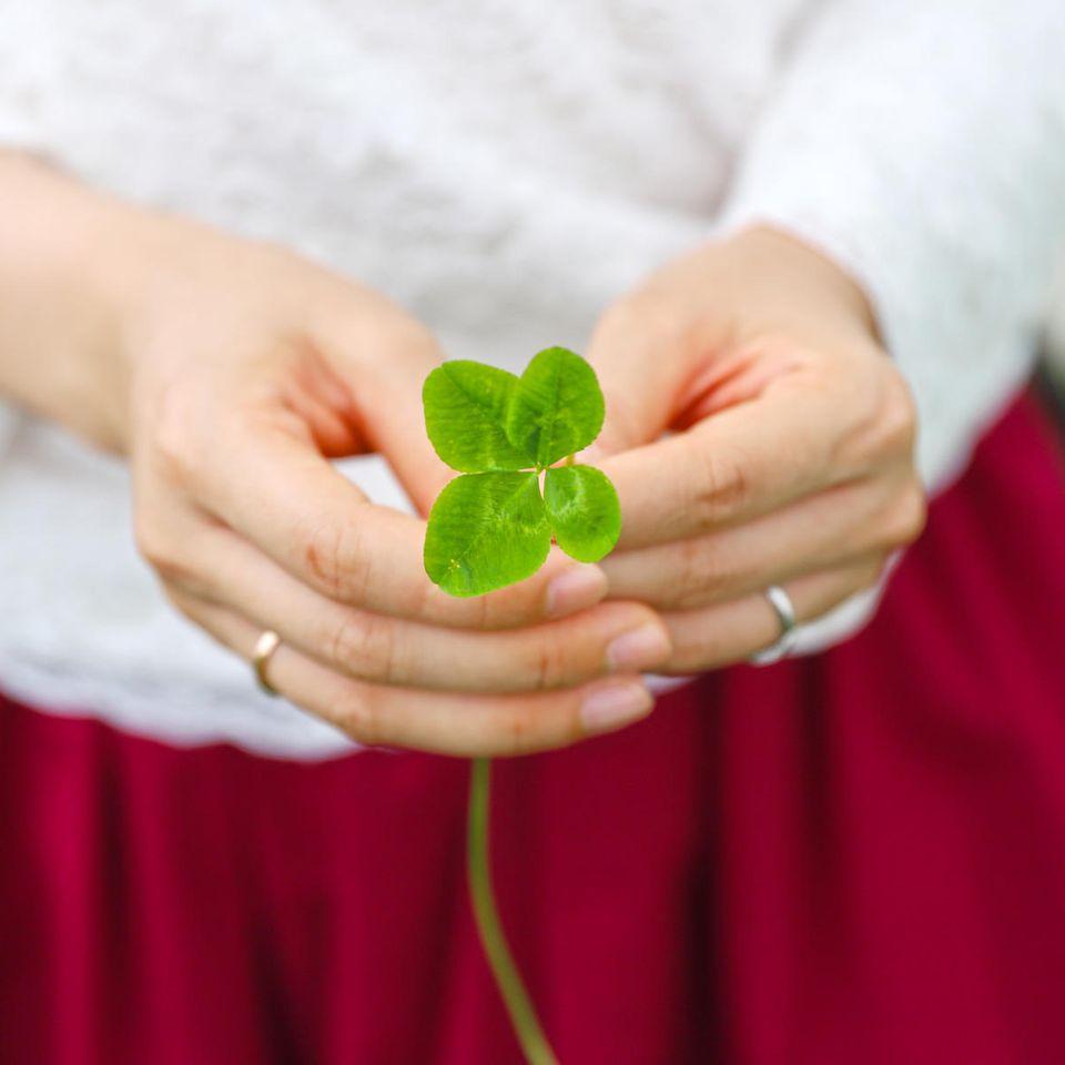 Horoskop: Eine Frau hält ein vierblättriges Kleeblatt in ihren Händen