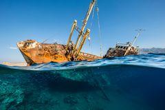 Unterwasserbilder 2020: Schiffswrack