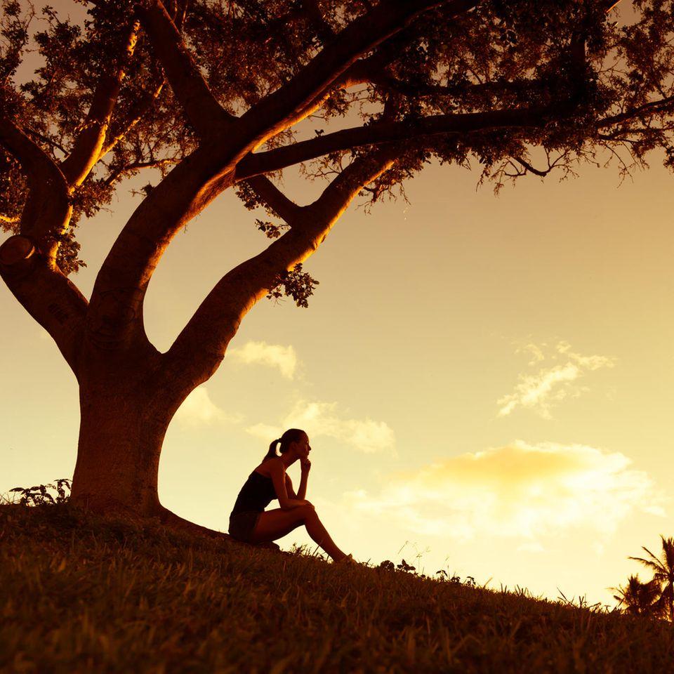 Baumhoroskop: Eine Frau sitzt bei Sonnenuntergang unter einem Baum