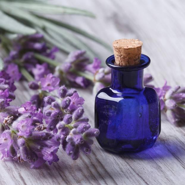 Lavendelöl: Öl neben Lavendelblüten