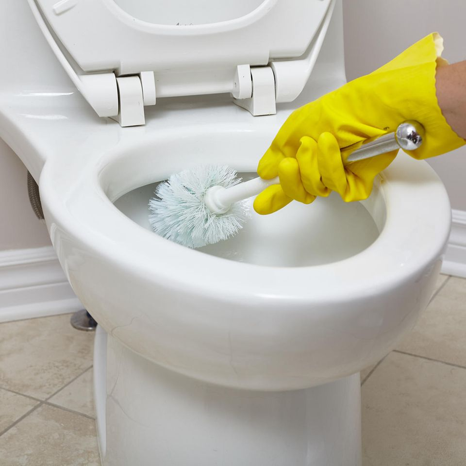 Toilette wird mit Bürste geputzt