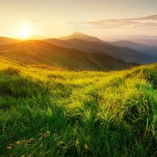 Wiese im Gebirge