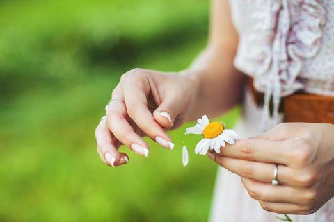Frau zupft Blätter eines Gänseblümchens aus