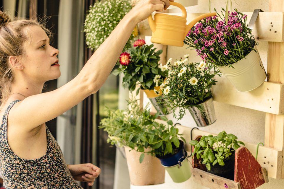 Balkon gestalten: Frau gießt Blumen