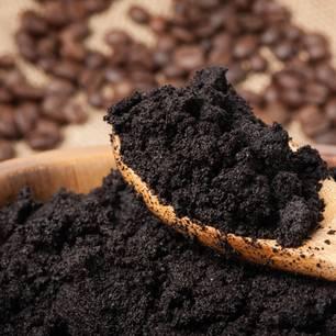 Kaffeesatz als Dünger: feuchter Kaffeesatz