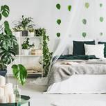 Urban Jungle: Schlafzimmer mit Pflanzen
