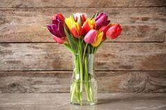 Tulpen schneiden: So geht's richtig