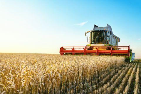 Agrar-Experten erklären die Corona-Auswirkungen auf die Landwirtschaft
