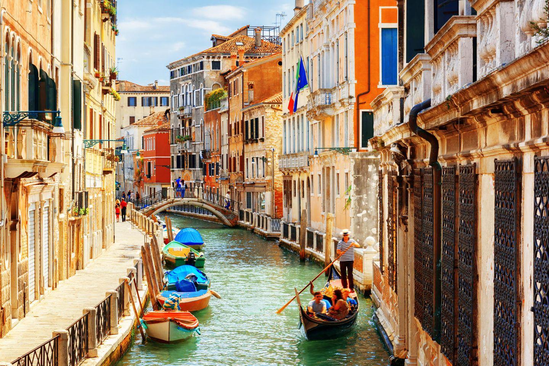 Corona In Venedig Heftige Entdeckung Delfine In Italien Gesichtet Brigitte De