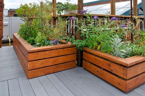 Hochbeet auf dem Balkon: Zwei Hochbeete auf einem Balkon