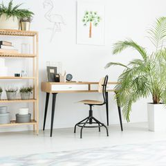 Arbeitszimmer einrichten: Gestaltungsmöglichkeit für den heimischen Arbeitsplatz