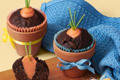 Möhren-Schoko-Muffins