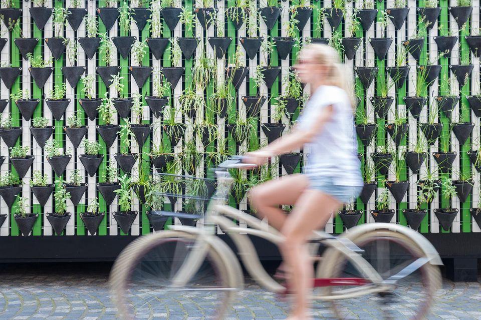 Umwelt schützen: Mädchen auf Fahrrad vor Pflanzenwand