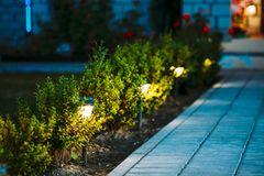 Terrassengestaltung: Solarlampen im Beet