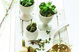 Osterdeko selber machen: Eierbecher und -schalen