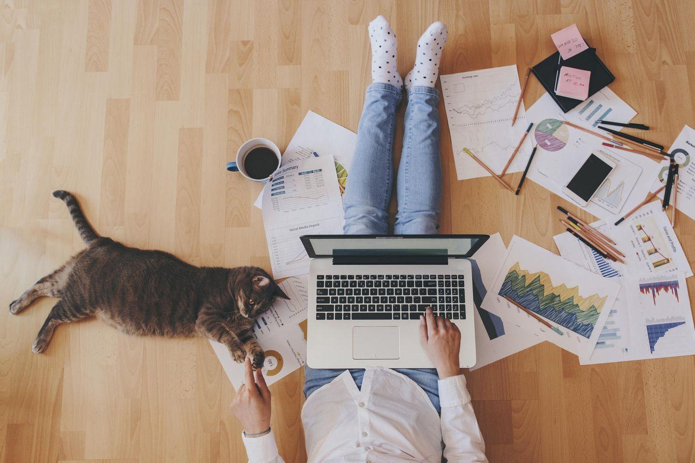 Homeoffice: Eine Frau sitzt mit ihrer Katze und einem Laptop auf dem Schoß auf dem Boden