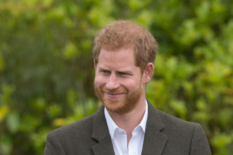 Prinz Harry: Er niest in seine Hand - wie gefährlich ist das?