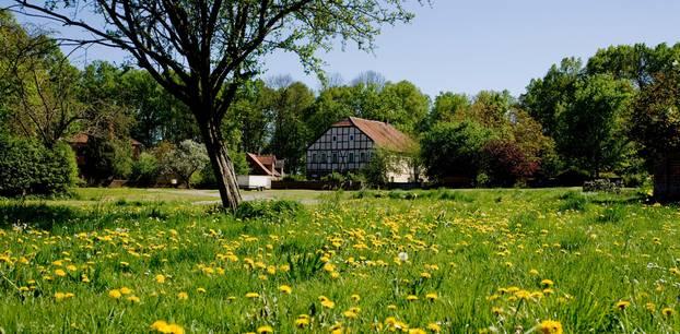 Wendland: Wiese mit Haus