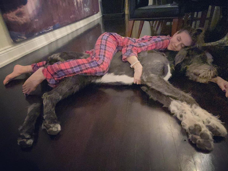 Stars im Home Office: Heidi Klum kuschelt mit Hund