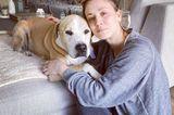 Stars im Home Office: Kaley Cuoco mit Hund