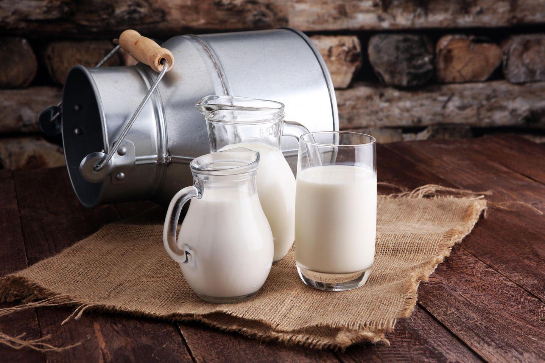 Milchmädchenrechnung: Milchkrüge stehen auf dem Tisch