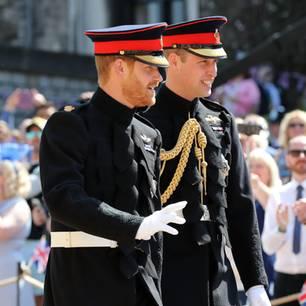 Harry + William: Verhindert ihr Streit ihr letztes Geschenk an Diana?