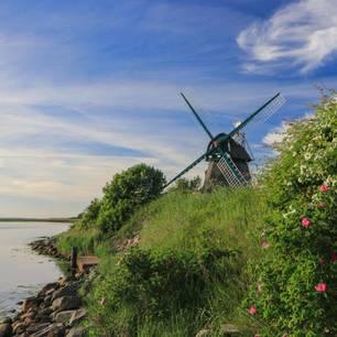 Urlaub in Deutschland: Geltinger Birk