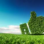 Grüner Daumen: Grüner Daumen aus Rasen