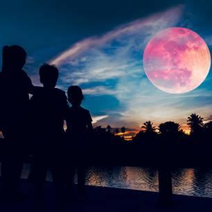 Horoskop: Drei Menschen schauen sich den Erdbeermond an