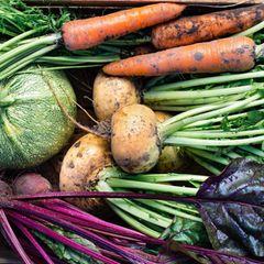 Regionale Superfoods - Gemüse