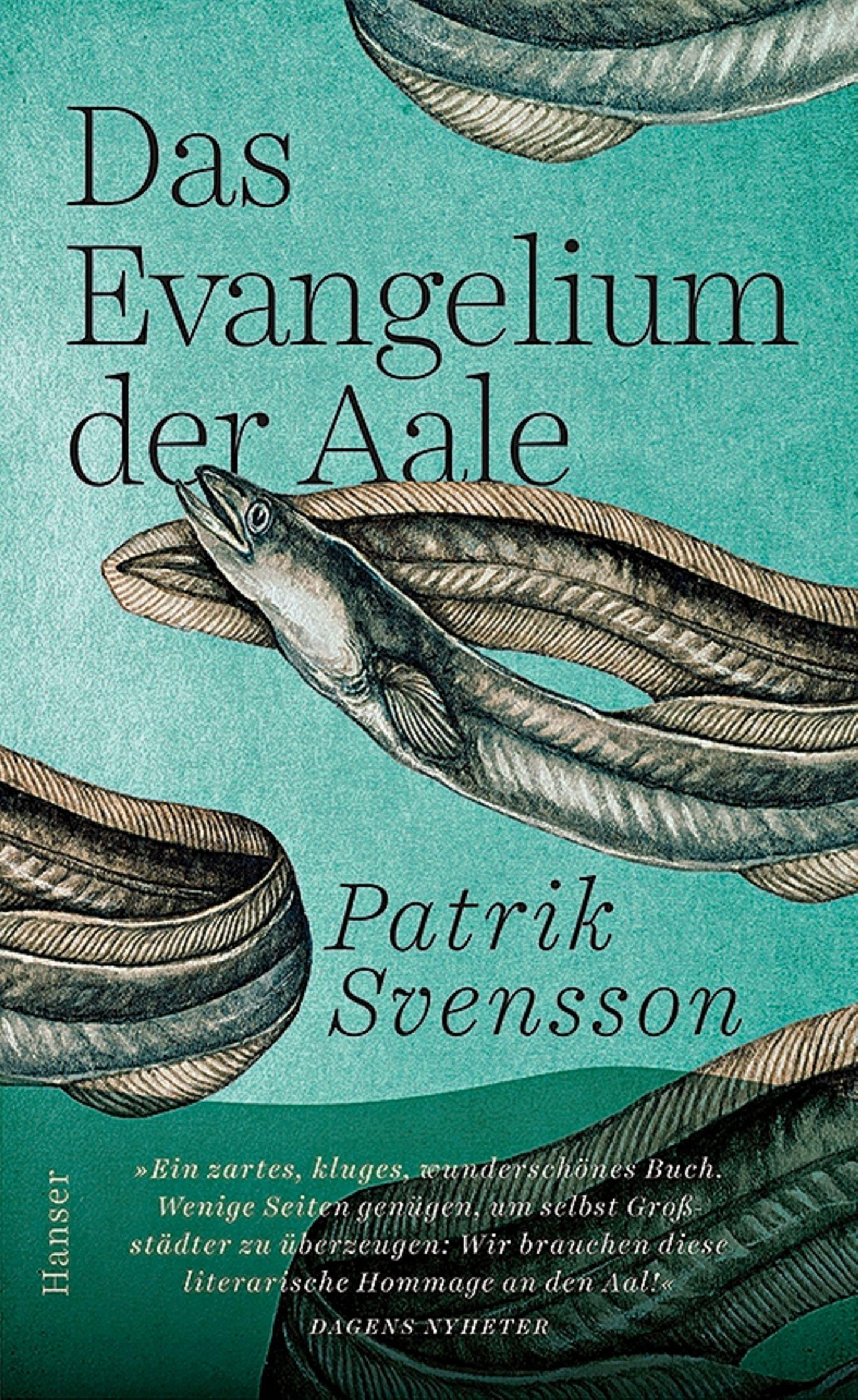 """Bücher für den Sommer: Buchcover """"Das Evangelium der Aale"""""""