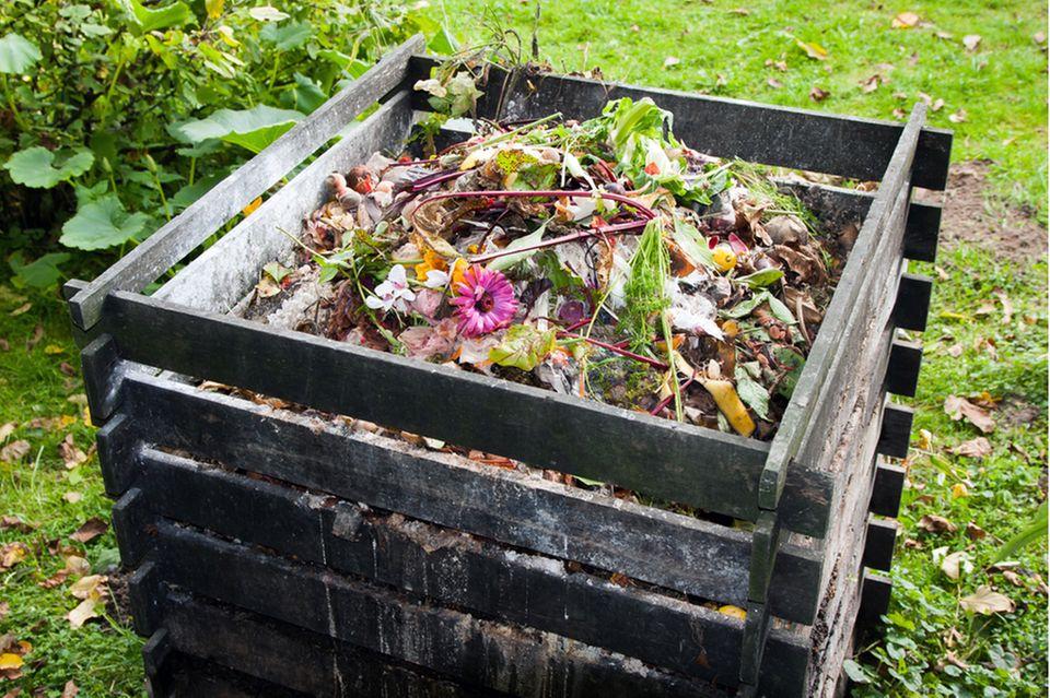 Nachhaltiger Garten: Komposthaufen