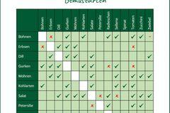 Nachhaltiger Garten: 10 Tipps für mehr Nachhaltigkeit